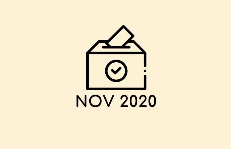 Votaciones Noviembre 2020